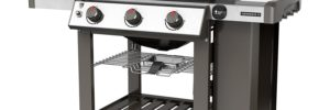 Best Weber Gas Grill Review
